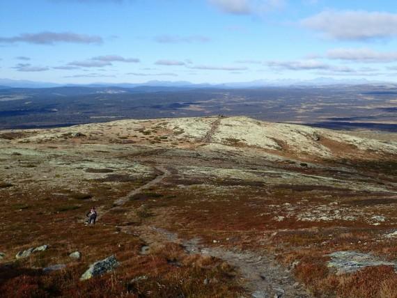 100 km stibonasa fra Nordseter til Ringebu